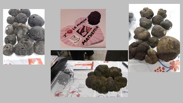 1 truffes (3)